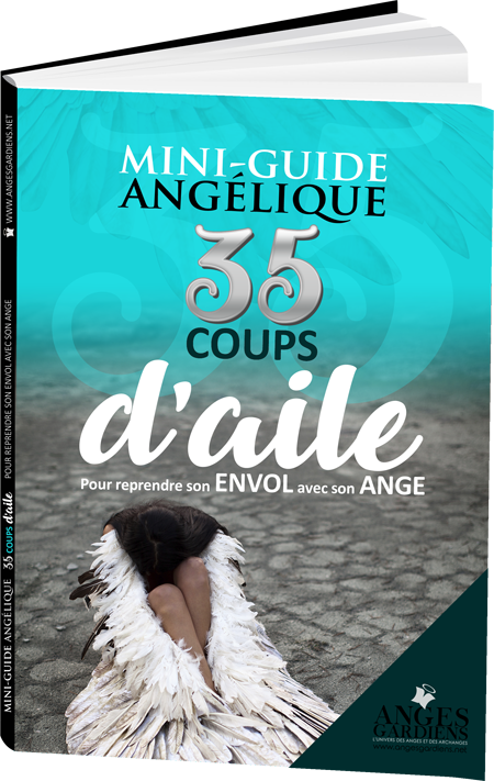 35-coups-d-aile