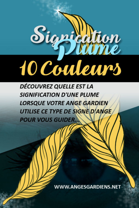 signification des plumes 10 couleurs de plumes. Black Bedroom Furniture Sets. Home Design Ideas