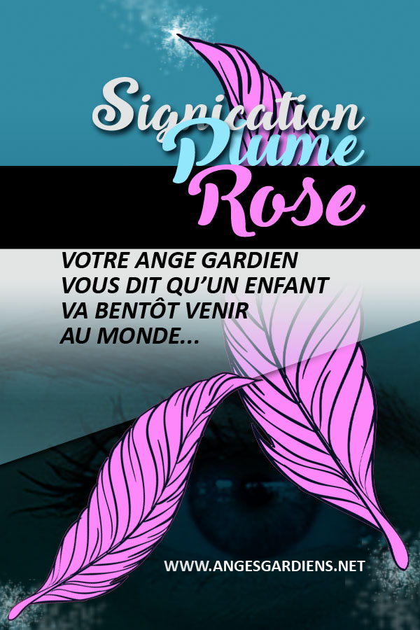 signification-des-plumes-roses